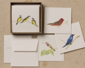 "[:pb]caixa pássaros 8 cartões diversos duplos com envelopes 8,5 x 8,5cm[:en]birds box: 8 assorted folded cards and envelopes 3.35"" x 3.35""[:]"