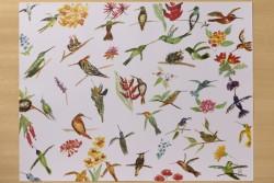 "[:pb]jogo americano em papel laminado beija flores 42 x 31cm[:en]laminated paper table mat set - hummingbirds 16.54"" x 12.20""[:]"